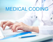 Why Life Science Graduates have an Edge over Others in Coding? -Avontix 1